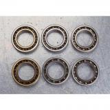 1.181 Inch | 30 Millimeter x 2.835 Inch | 72 Millimeter x 0.748 Inch | 19 Millimeter  NACHI N306  Cylindrical Roller Bearings