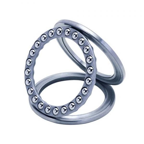 NACHI 6006ZZE C3  Single Row Ball Bearings #1 image